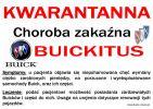 Buickitus.jpg
